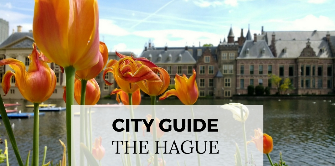 City guide The Hague, Netherlands. Plan your visit to The Hague | Your Dutch Guide