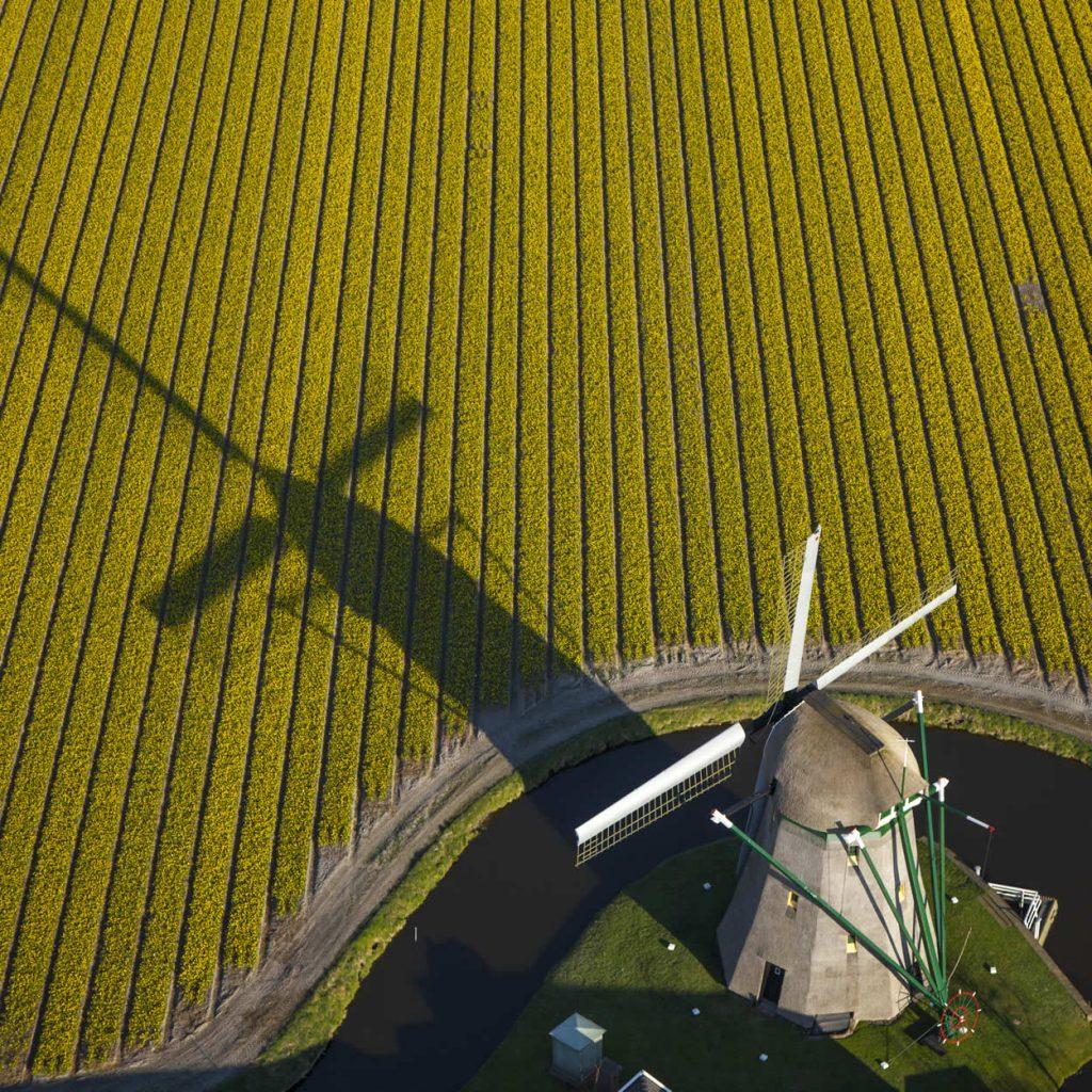 Keukenhof Gardens The Netherlands (photo by: Mill-Cris Toala Olivares) | Your Dutch Guide