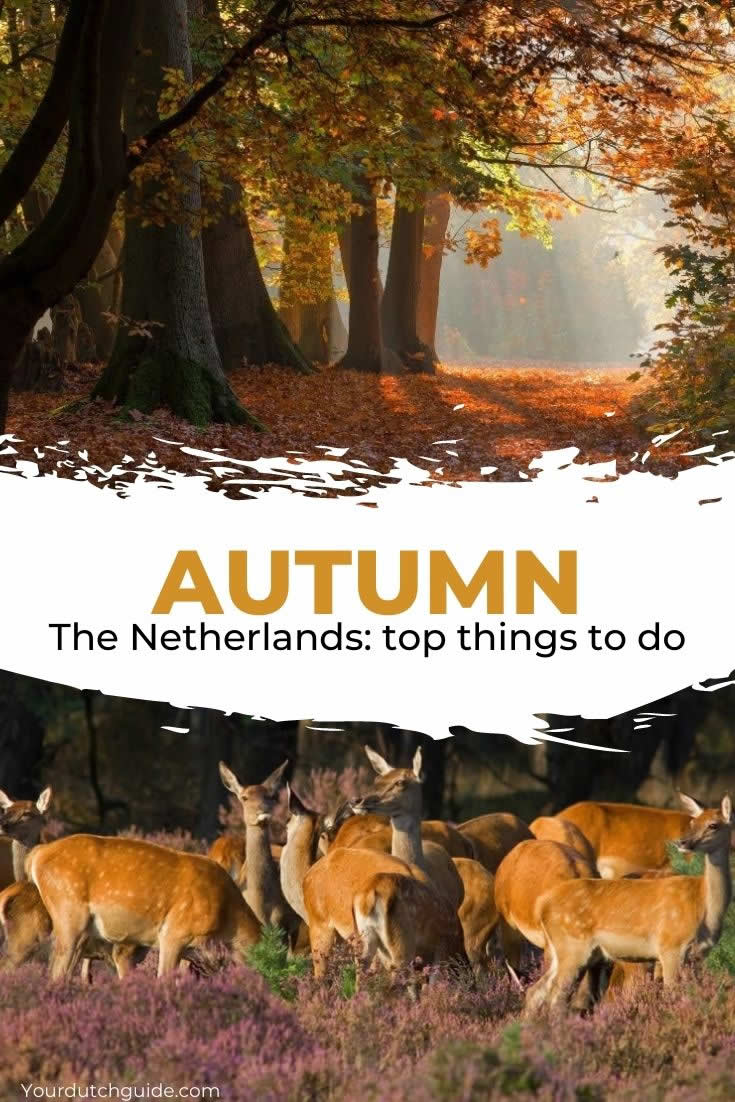 The best places to visit in The Netherlands in autumn | Your Dutch Guide