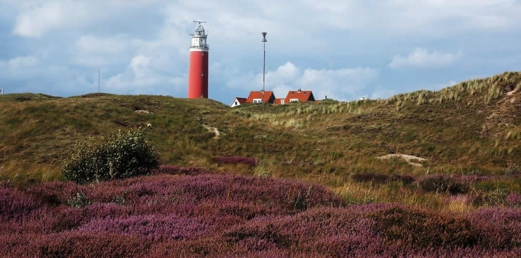 Texel, The Netherlands | Top things to do on Texel island, The Netherlands | Your Dutch Guide