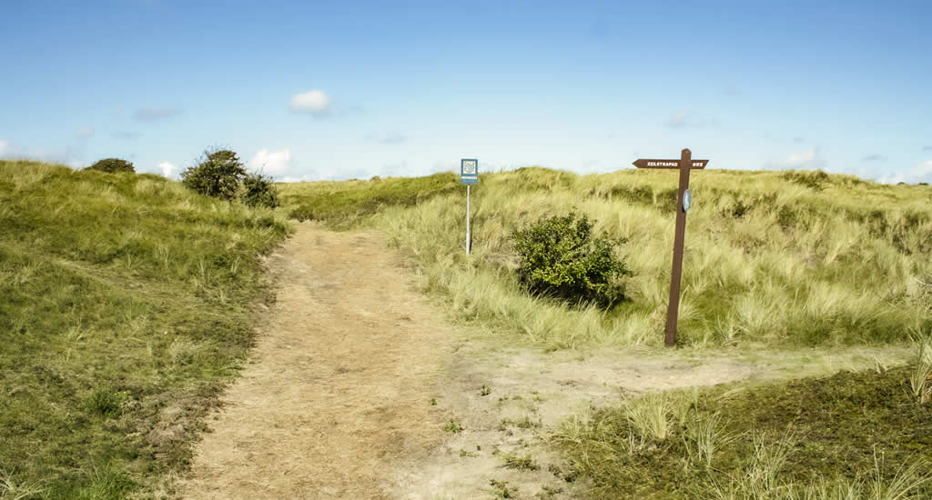 Ameland, The Netherlands | Top things to do on Ameland, The Netherlands: Het Oerd | Your Dutch Guide
