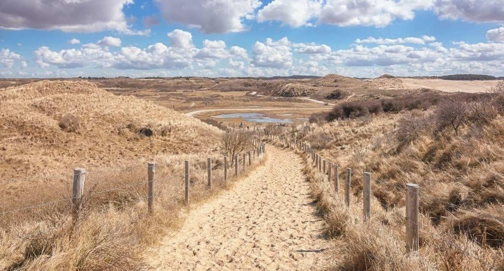 Nationaal Park Zuid-Kennemerland | Your Dutch Guide